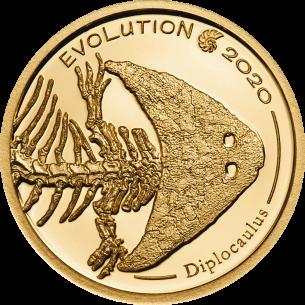 DIPLOCAULUS Evolution of...
